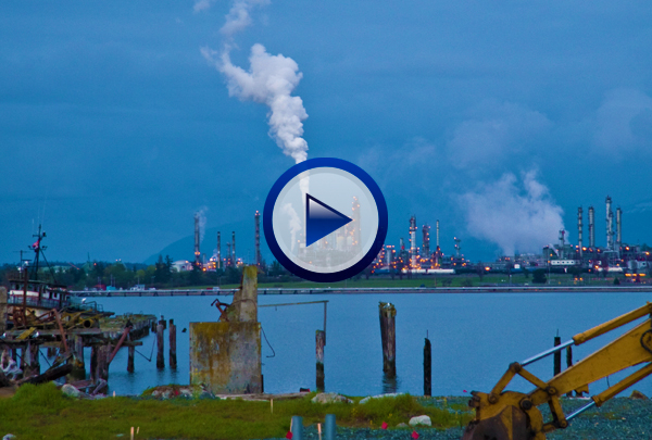 Our Human Impact on the Biosphere DVD introduces the concept of biological magnification before looking at the various types of air pollution and their relationship to phenomena such as smog, acid rain, destruction of the ozone layer and global warming. The program then examines the pollution of water by biodegradable and non-biodegradable pollutants, pathogens, drugs and thermal pollution sources. Deforestation, desertification and other habitat destruction is then addressed along with the impact of such destruction on threatened and endangered species.